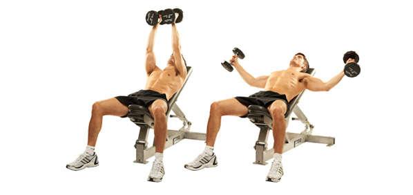 قفسه سینه دمبل برای تازه کارها در ورزش