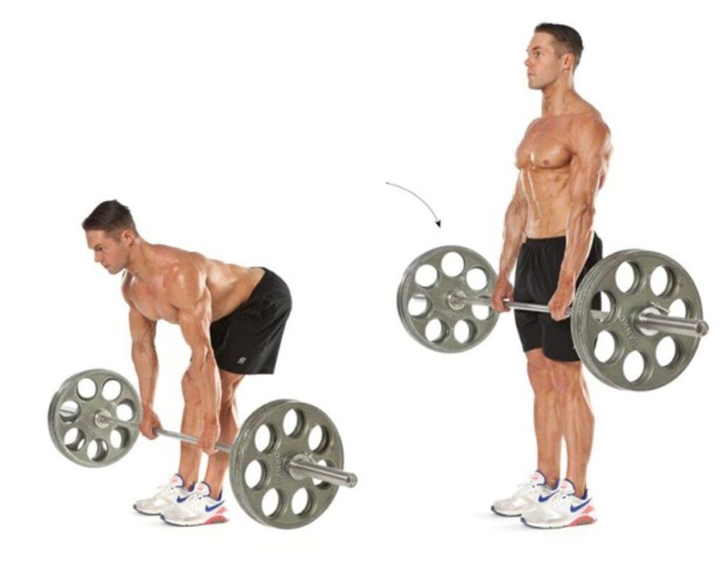 تمرین برای عضلات پا در تازه کار ها ددلیفت