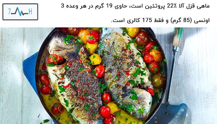 ماهی ماده غذایی پروتئین دار