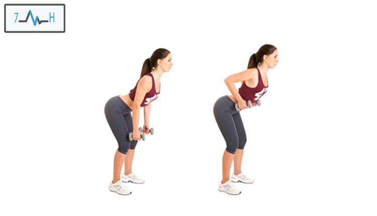 تمرین زیر بغل دمبل خم